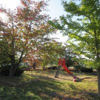 児童遊園の樹木剪定ボランティア活動